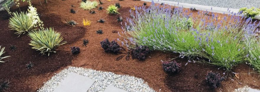 landscaping seattle